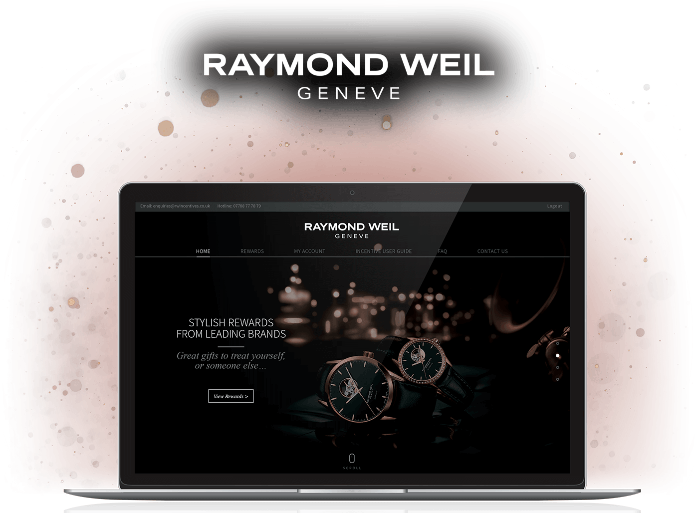 Incentive website design