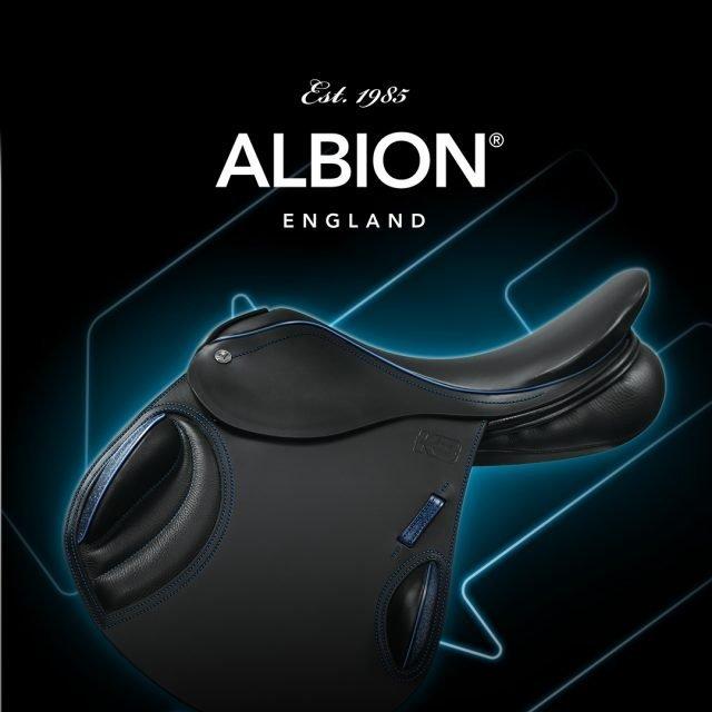albion-logo-branding